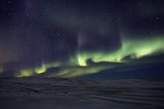 Aurora Iceland 26.10.2019 #59 (ragnaolof) Tags: northernlights auroraborealis sky strandir stars steingrímsfjörður snow drangsnes bjarnafjörður bjarnafjarðarháls night nature