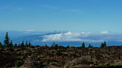 The Clouds Below (cangaroojack) Tags: spain tenerife canary island islands canaries kanaren teneriffa spanien insel berg teide mount mountain cloud clouds wolken