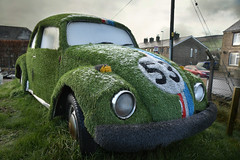 Relics of the VW Emissions scandal (PentlandPirate of the North) Tags: vw emissions scandal plastic grass environmental car pollution herbie beetle volkswagen