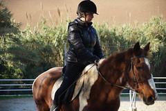 Mia sorella a lezione di equitazione (Giovanni Santori) Tags: cavallo animali ippica equitazione