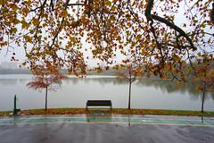 Intense colors (Dumby) Tags: landscape bucurești românia sector3 autumn fall ior titan nature outdoor colors