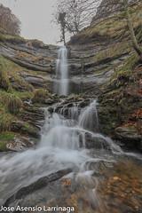 Parque Natural de Gorbeia  2019   #DePaseoConLarri #Flickr-45 (Jose Asensio Larrinaga (Larri) Larri1276) Tags: 2019 orozko bizkaia basquecountry euskalherria parquenaturaldegorbeiagorbea navarra otoño fotografía airelibre saltosdeagua naturaleza