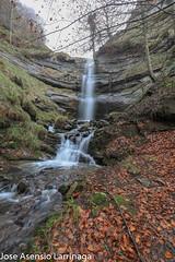 Parque Natural de Gorbeia  2019   #DePaseoConLarri #Flickr-43 (Jose Asensio Larrinaga (Larri) Larri1276) Tags: 2019 orozko bizkaia basquecountry euskalherria parquenaturaldegorbeiagorbea navarra otoño fotografía airelibre saltosdeagua naturaleza
