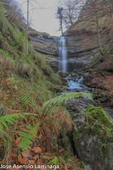 Parque Natural de Gorbeia  2019   #DePaseoConLarri #Flickr-35 (Jose Asensio Larrinaga (Larri) Larri1276) Tags: 2019 orozko bizkaia basquecountry euskalherria parquenaturaldegorbeiagorbea navarra otoño fotografía airelibre saltosdeagua naturaleza