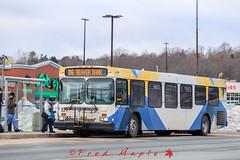 IMG_1495 (1fredmaple) Tags: hfxtransit1139 halifaxtransit hfxtransit transitbus transitphotography busphotography bus newflyerd40lf newflyer sackville downsviewplaza hfxtransitroute86