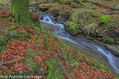 Parque Natural de Gorbeia  2019   #DePaseoConLarri #Flickr-25 (Jose Asensio Larrinaga (Larri) Larri1276) Tags: 2019 orozko bizkaia basquecountry euskalherria parquenaturaldegorbeiagorbea navarra otoño fotografía airelibre saltosdeagua naturaleza