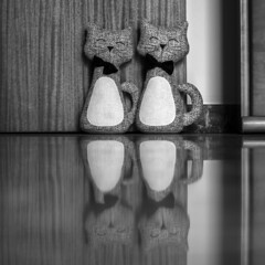Reflexive cats (Alfredo Liverani) Tags: thursdaymonochrome thursday monochrome tm 7dwftm canonm50 canon m50 eos eosm50 canoneosm50 eoskissm pointandshoot point shoot ps flickrdigital flickr digital camera cameras emiliaromagna romagna faenza faventia faience animal kitten gatto gatta gatti gatte cat cats chats chat katze katzen gato gatos pet pets tabby furry kitty moggy moggies gattino animale ininterni 3392019 project365339 project365120519 project36505dec19 oneaday photoaday pictureaday project365 project project2019 2019pad