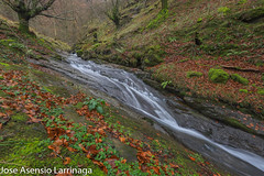 Parque Natural de Gorbeia  2019   #DePaseoConLarri #Flickr-21 (Jose Asensio Larrinaga (Larri) Larri1276) Tags: 2019 orozko bizkaia basquecountry euskalherria parquenaturaldegorbeiagorbea navarra otoño fotografía airelibre saltosdeagua naturaleza