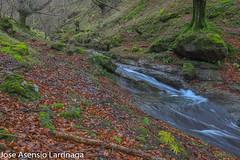 Parque Natural de Gorbeia  2019   #DePaseoConLarri #Flickr-20 (Jose Asensio Larrinaga (Larri) Larri1276) Tags: 2019 orozko bizkaia basquecountry euskalherria parquenaturaldegorbeiagorbea navarra otoño fotografía airelibre saltosdeagua naturaleza