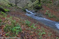 Parque Natural de Gorbeia  2019   #DePaseoConLarri #Flickr-18 (Jose Asensio Larrinaga (Larri) Larri1276) Tags: 2019 orozko bizkaia basquecountry euskalherria parquenaturaldegorbeiagorbea navarra otoño fotografía airelibre saltosdeagua naturaleza