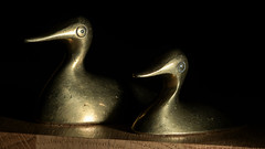 Side by side (looking flat) (PChamaeleoMH) Tags: flash ducks brass macro ornament home indoors