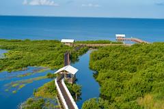 SouthPadreIsland_298 (allen ramlow) Tags: south padre island birding nature center landscape wildlife sony alpha travel day