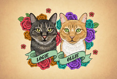 Logie&Ollie (simang.studio) Tags: animals nature animal pets cute wildlife love pet cats dogs dog photography cat instagram naturephotography photooftheday dogsofinstagram catsofinstagram birds instagood petstagram animallovers art wildlifephotography puppy petsofinstagram animalphotography animalsofinstagram bhfyp