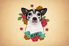 Beans (simang.studio) Tags: animals nature animal pets cute wildlife love pet cats dogs dog photography cat instagram naturephotography photooftheday dogsofinstagram catsofinstagram birds instagood petstagram animallovers art wildlifephotography puppy petsofinstagram animalphotography animalsofinstagram bhfyp