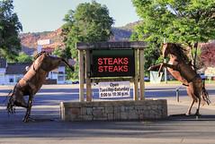 Steaks (arbyreed) Tags: arbyreed food bar restaurant eats saloon kanab steaks steakhouse kanecountyutah ironhorsesaloonandrestaurant sculpture sign advertising ironhorsesculpture