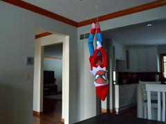 5.Spider-Elf (robjvale) Tags: nikon d3200 bauble elfonashelf spiderman