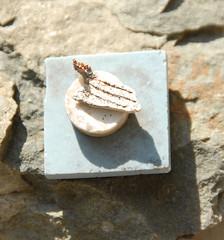 DSC_0057 (4) (jgdav) Tags: ancient quartz macro ceramic white ochre numerology image pictograph petroglyph america