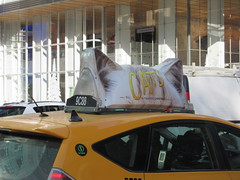 2019 CATS Movie Musical Ad on top of Taxi Cab 1332 (Brechtbug) Tags: 2019 cats scalp riding top taxi cab movie musical broadway billboard kinda look like mutants new york city 12052019 nyc action andrew lloyd webber 80s winter garden theater show portrait poster standee theaters 7th ave 41st street above times square
