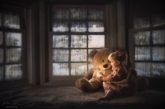Magical Days ({jessica drossin}) Tags: jessicadrossin childhood kids girl toddler stuffed animal bear windows rain magic book dress indoors blue dark wwwjessicadrossincom