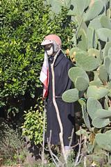 Maltese Scarecrow?? (Roy Lowry) Tags: dingli malta