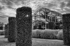 RHS Wisley glasshouse (tonybill) Tags: december gardens rhs rhswisley sonya7iii surrey voigtlandernokton40mmf12fe winter wisley bokeh
