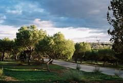 Madrid (marioandrei) Tags: kodak proimage 100 contax g2 zeiss planar t 245