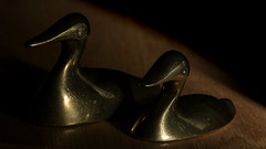 Side by side (curves) (PChamaeleoMH) Tags: flash ducks brass macro ornament home indoors
