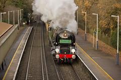 MN no.35028 'Clan Line' (alts1985) Tags: mn no35028 clan line mnlps main steam train surrey hills pullman belmond worplesdon 051219