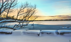 Gradual  Freeze On The Lake (JACK TOME) Tags: ice snow lake winter lookout ontario trees sunset wintersunset yorkregion
