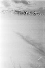 Abstract (rATRIJS) Tags: canon135mmf35ltm 135mm ltm canon model7 canonmodel7 ilfordhp5plus ilfordhp5 hp5 hp5plus ilford expiredfilm l39 m39 rangefinder standdevelopment rodinal compardr09 analog 35mm bw blackandwhite winter latvia latvija cold snow