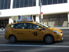 2019 CATS Movie Musical Ad on top of Taxi Cab 1341 (Brechtbug) Tags: 2019 cats scalp riding top taxi cab movie musical broadway billboard kinda look like mutants new york city 12052019 nyc action andrew lloyd webber 80s winter garden theater show portrait poster standee theaters 7th ave 41st street above times square