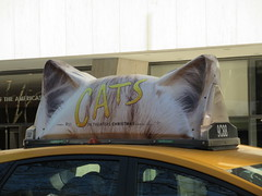 2019 CATS Movie Musical Ad on top of Taxi Cab 1339 (Brechtbug) Tags: 2019 cats scalp riding top taxi cab movie musical broadway billboard kinda look like mutants new york city 12052019 nyc action andrew lloyd webber 80s winter garden theater show portrait poster standee theaters 7th ave 41st street above times square