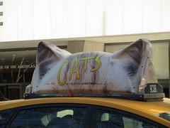 2019 CATS Movie Musical Ad on top of Taxi Cab 1337 (Brechtbug) Tags: 2019 cats scalp riding top taxi cab movie musical broadway billboard kinda look like mutants new york city 12052019 nyc action andrew lloyd webber 80s winter garden theater show portrait poster standee theaters 7th ave 41st street above times square