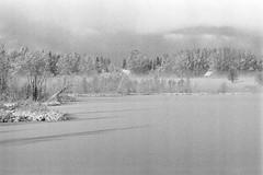 Landscape (rATRIJS) Tags: canon135mmf35ltm 135mm ltm canon model7 canonmodel7 ilfordhp5plus ilfordhp5 hp5 hp5plus ilford expiredfilm l39 m39 rangefinder standdevelopment rodinal compardr09 analog 35mm bw blackandwhite winter latvia latvija cold snow