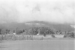 Some Dust Particles (rATRIJS) Tags: canon135mmf35ltm 135mm ltm canon model7 canonmodel7 ilfordhp5plus ilfordhp5 hp5 hp5plus ilford expiredfilm l39 m39 rangefinder standdevelopment rodinal compardr09 analog 35mm bw blackandwhite winter latvia latvija cold snow