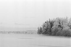 Spot Of Moisture (rATRIJS) Tags: canon135mmf35ltm 135mm ltm canon model7 canonmodel7 ilfordhp5plus ilfordhp5 hp5 hp5plus ilford expiredfilm l39 m39 rangefinder standdevelopment rodinal compardr09 analog 35mm bw blackandwhite winter latvia latvija cold snow