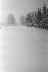 Uneven Development (rATRIJS) Tags: canon50mmf18ltm 50mm ltm canon model7 canonmodel7 ilfordhp5plus ilfordhp5 hp5 hp5plus ilford expiredfilm l39 m39 rangefinder standdevelopment rodinal compardr09 analog 35mm bw blackandwhite winter latvia latvija cold snow