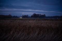 Twiske Four (Roderick van der Steen) Tags: sonya7s sonyalpha zeissmilvus50mmf14distagon zeiss zf2 milvus1450 novoflex twiske twilight clouds reeds lampost