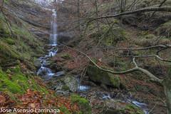 Parque Natural de Gorbeia  2019   #DePaseoConLarri #Flickr-48 (Jose Asensio Larrinaga (Larri) Larri1276) Tags: 2019 orozko bizkaia basquecountry euskalherria parquenaturaldegorbeiagorbea navarra otoño fotografía airelibre saltosdeagua naturaleza