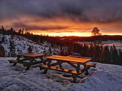 Striking Sunrise (burgerno) Tags: sunrise glow morning bymarka grønlia bench norge norway norja trondheim snapseed huaweip20pro huaweicltl29 winter snow orange