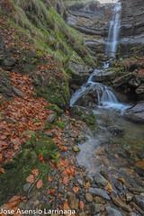 Parque Natural de Gorbeia  2019   #DePaseoConLarri #Flickr-29 (Jose Asensio Larrinaga (Larri) Larri1276) Tags: 2019 orozko bizkaia basquecountry euskalherria parquenaturaldegorbeiagorbea navarra otoño fotografía airelibre saltosdeagua naturaleza