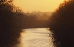 sunset along the canal (Johnson Cameraface) Tags: 2019 autumn olympus omde1 em1 micro43 mzuiko 40150mm f40f56r johnsoncameraface december canal donnavigation doncaster hazy
