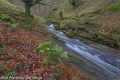 Parque Natural de Gorbeia  2019   #DePaseoConLarri #Flickr-23 (Jose Asensio Larrinaga (Larri) Larri1276) Tags: 2019 orozko bizkaia basquecountry euskalherria parquenaturaldegorbeiagorbea navarra otoño fotografía airelibre saltosdeagua naturaleza