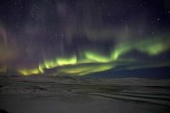 Aurora Iceland 26.10.2019 #60 (ragnaolof) Tags: northernlights auroraborealis sky strandir stars steingrímsfjörður snow drangsnes bjarnafjörður bjarnafjarðarháls night nature