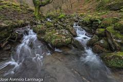 Parque Natural de Gorbeia  2019   #DePaseoConLarri #Flickr-8 (Jose Asensio Larrinaga (Larri) Larri1276) Tags: 2019 orozko bizkaia basquecountry euskalherria parquenaturaldegorbeiagorbea navarra otoño fotografía airelibre saltosdeagua naturaleza