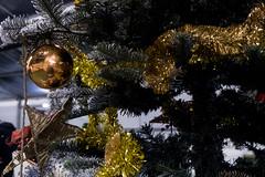 CLAB6011 (mangaddicted) Tags: christmas christmasvillage europe ilsognodinatale milan milano actors children christmasdecoration christmaslight christmastree culture elf elves event fun houses italy lights market park playful presents reindeer rooms santaclaus sledge underconstruction winter worker