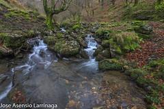 Parque Natural de Gorbeia  2019   #DePaseoConLarri #Flickr-7 (Jose Asensio Larrinaga (Larri) Larri1276) Tags: 2019 orozko bizkaia basquecountry euskalherria parquenaturaldegorbeiagorbea navarra otoño fotografía airelibre saltosdeagua naturaleza