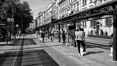 Waiting for the Bus and the Tram (rainerpetersen657) Tags: krakow krakau poland polska polen street streetfotography people blackandwhite bw schwarzweiss blancoynegro noiretblanc noirblanc travel sony sonyalpha