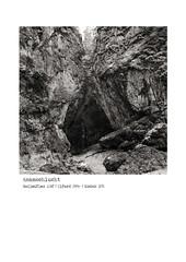 asamschlucht (ulrich.gerndt) Tags: asamschlucht ilfordfp4 rolleiflex framed analog landscape