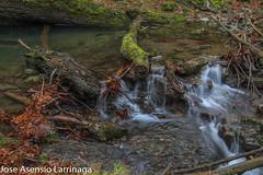 Parque Natural de Gorbeia  2019   #DePaseoConLarri #Flickr-13 (Jose Asensio Larrinaga (Larri) Larri1276) Tags: 2019 orozko bizkaia basquecountry euskalherria parquenaturaldegorbeiagorbea navarra otoño fotografía airelibre saltosdeagua naturaleza